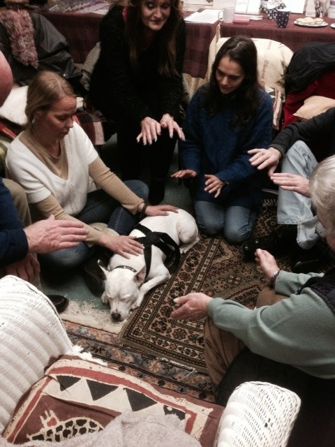 FB Xmas animal healing evening