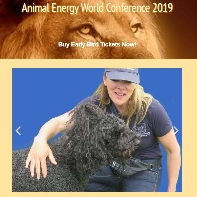 Animal Energy World Conference